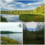 8 причин для отдыха в Ленобласти